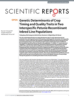 Genetic Determinants of Crop Timing and Quality Traits in Two Interspecific Petunia Recombinant Inbred Line Populations