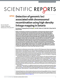 Detection of genomic loci associated with chromosomal recombination using high-density linkage mapping in Setaria