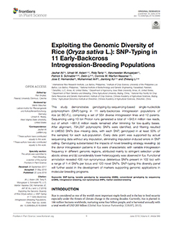 Exploiting the genomic diversity of rice (Oryza sativa L.): SNP-typing in 11 early-backcross introgression-breeding populations